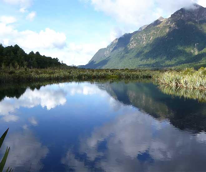 På vägen ut till fjordarmen Milford Sound på Sydön, finns den vackra sjön, Lake Mirror.