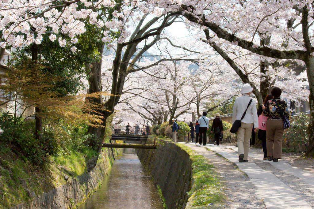 Filosofernas promenad, cykeltur i Kyoto