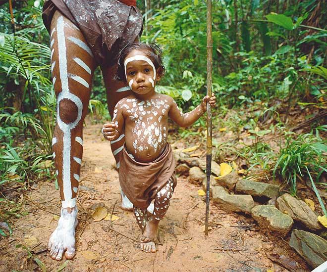 Australien, vandring i regnskogen med aboriginer