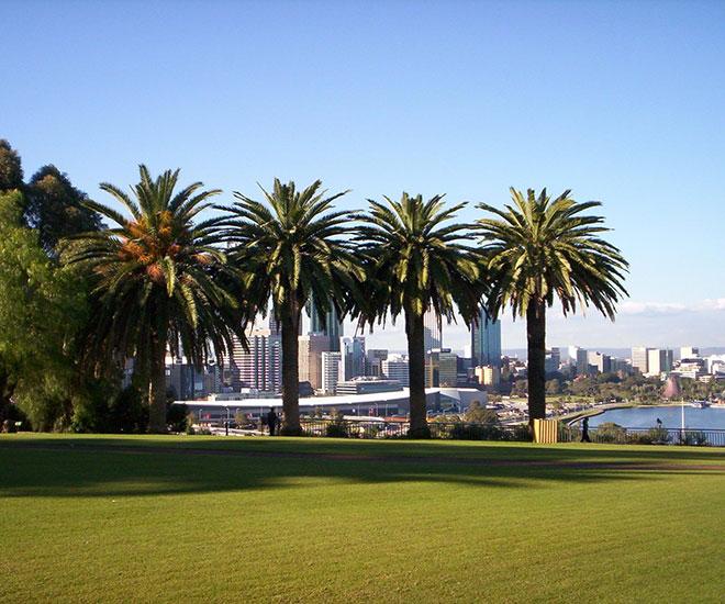 Australien Kings Park i Perth