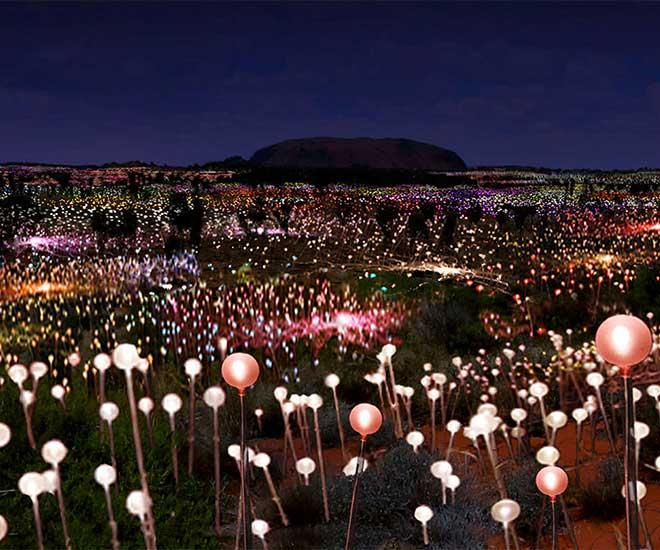 Australien Field of Light i Ayers Rock