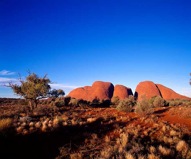 Australien, Red Center The olgas eller Kata Tjuta i Ayers Rock