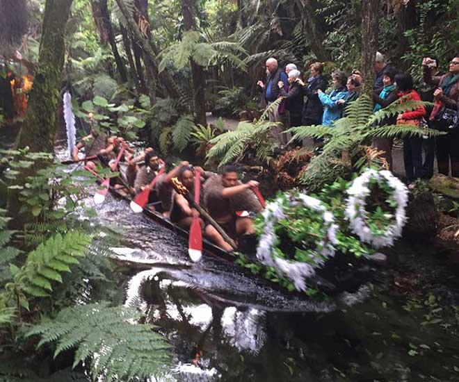 Maoriernas spännande kultur.